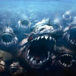 ТОП-10 самых опасных рыб убийц в мире! Фото и описание || Самые опасные рыбы планеты рейтинг