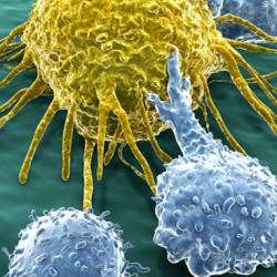 Ученые нашли новый способ лечения рака одним уколом