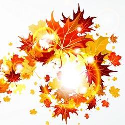 Почему листья желтеют осенью реферат 7001