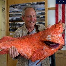 Самый большой окунь нильский - описание, особенности поведения, места обитания, рыбалка || Окунь самый большой