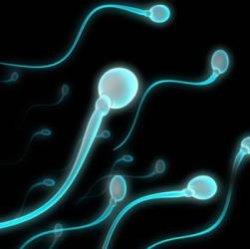 Сперма умирает в воде