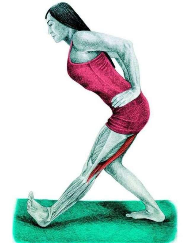растяжка мышц в домашних условиях с картинками аксессуар замечательно дополнит