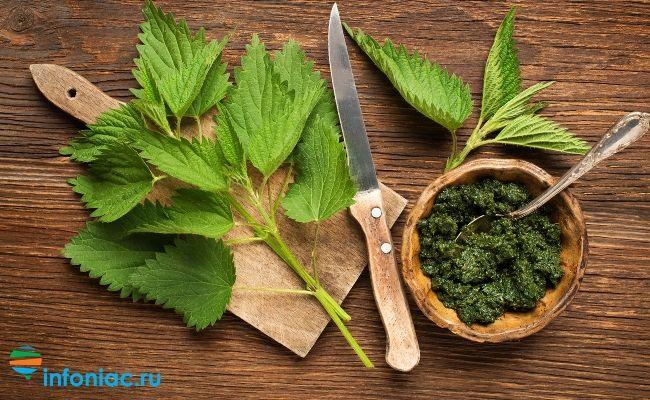 Сорняк или суперпродукт? Как вкусно приготовить крапиву (3 простых рецепта)