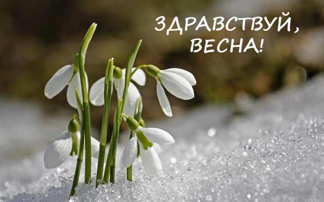 https://www.infoniac.ru/upload/medialibrary/18b/18b86e9b4ca8a3ce4c1eca2d4d51a7d6.jpg