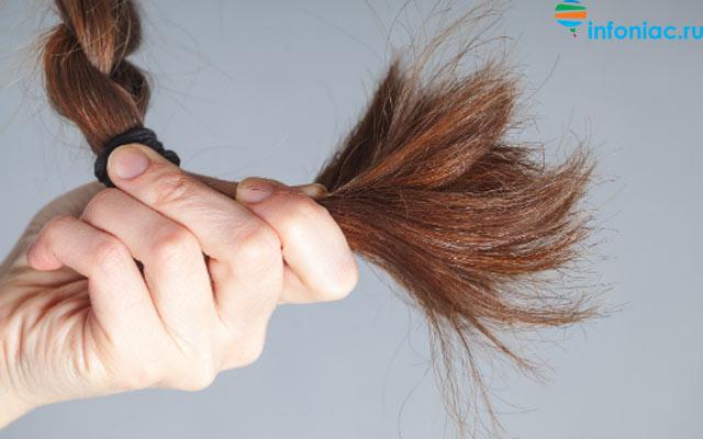 hair1220-1.jpg