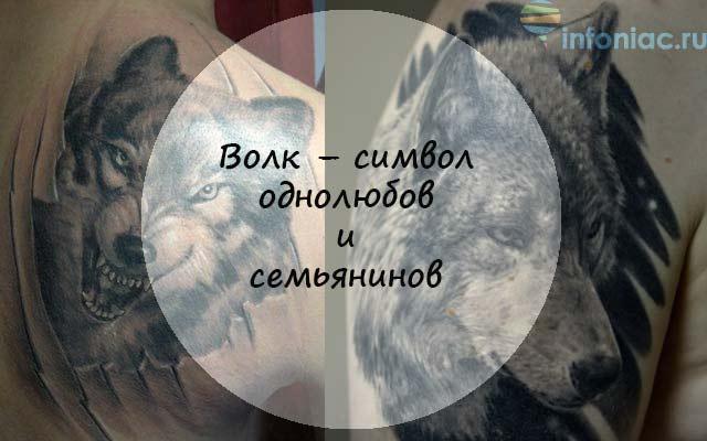 Значения тату: самые популярные тату животных