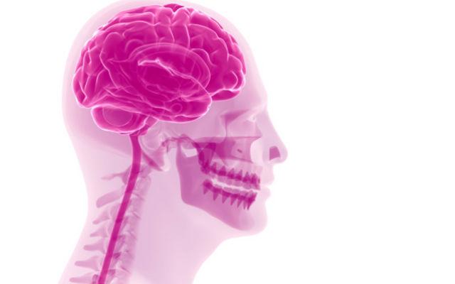 Память и интеллект: продукты, которые наносят им вред