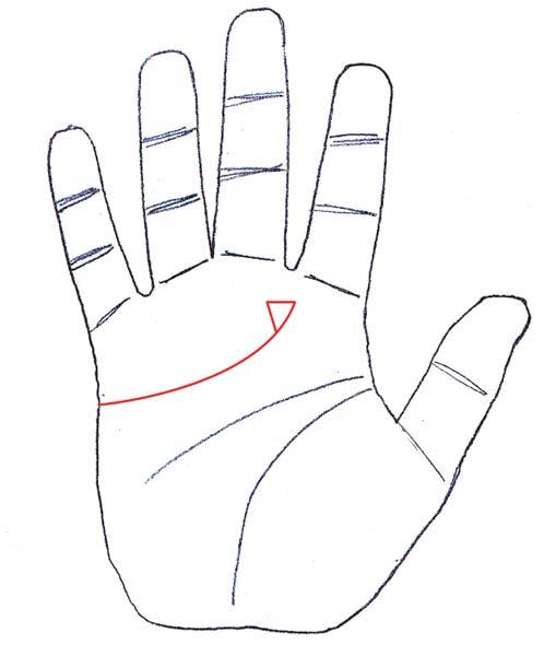 palm-signs7.jpg
