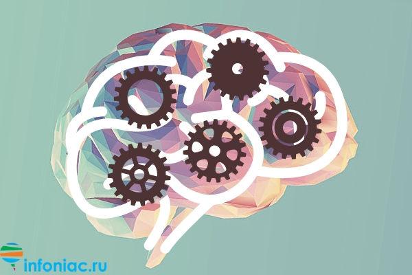 Продукты, полезные для ума или как активировать мозг перед экзаменом