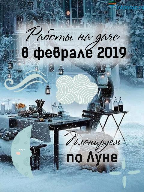 Лунный календарь для растений по дням на февраль 2019 (самый полный!)