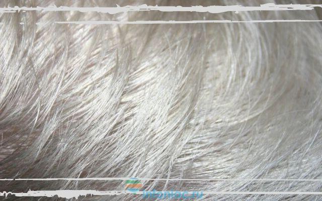 Во сколько лет седеют волосы у мужчин