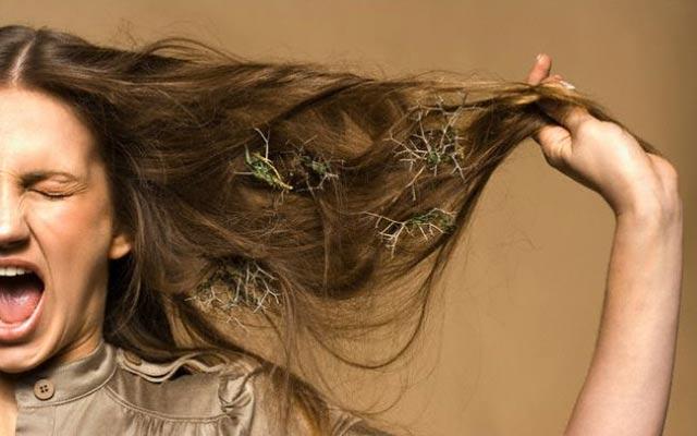 hair0518-4.jpg