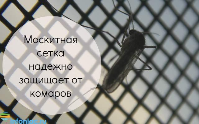Как избавиться от комаров, не навредив своему здоровью