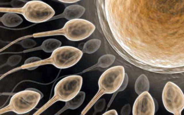 Фото как выглятдит сперма фото 650-474