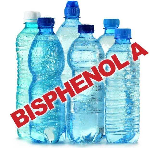 essay about plastic bottles