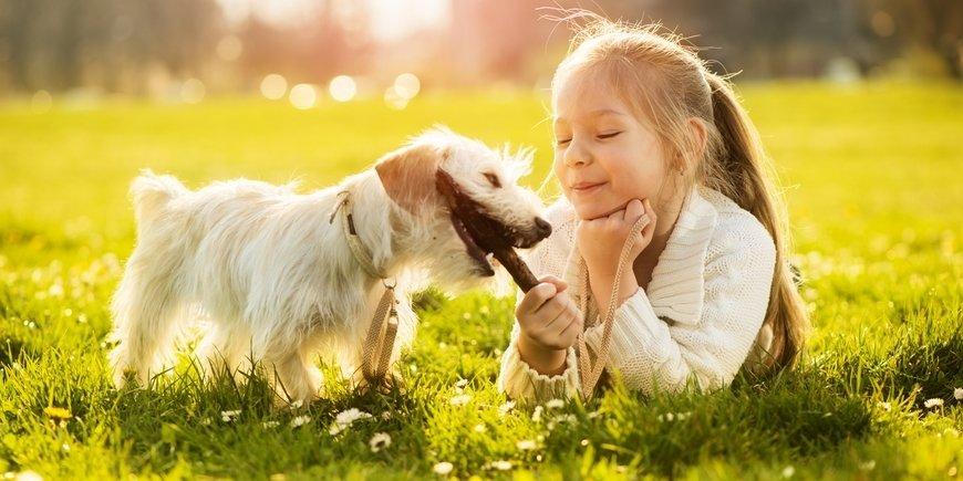 Как выбрать домашнее животное для ребенка ❗️☘️ ( ͡ʘ ͜ʖ ͡ʘ)