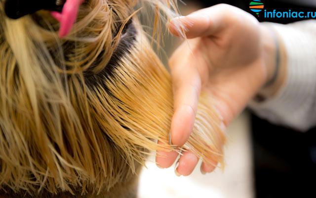 hair0920-4.jpg