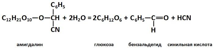 abrikostochki11.jpg