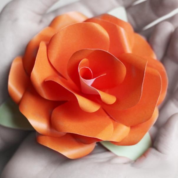 Цветы из бумаги своими руками скачать шаблон