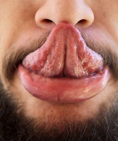 Как себе дотронуться языком до члена