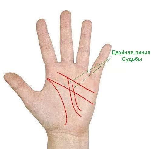palm-signs10.jpg