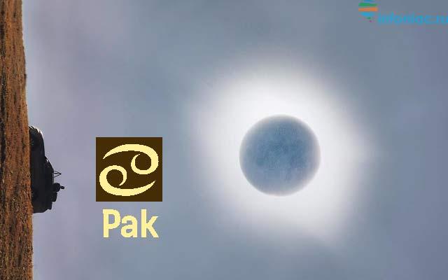 eclipse060119-7.jpg