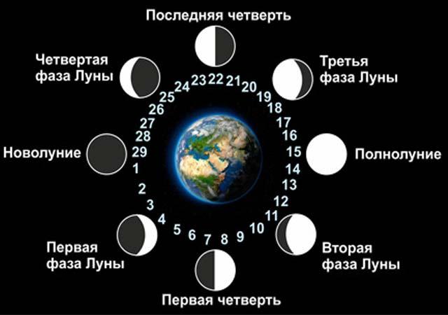Предсказания по Лунному календарю: как прогнозировать события года самостоятельно?