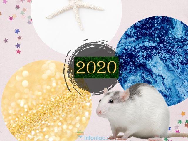 В каких цветах одежды нужно встречать 2020 год Крысы, чтобы притянуть удачу