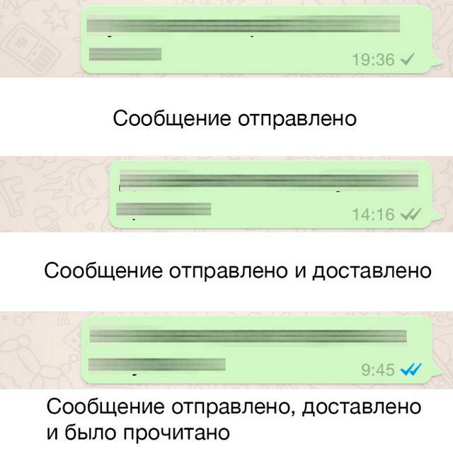 whatsapp-14-1.jpg