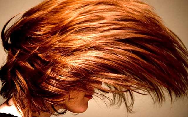 hair0817-11.jpg