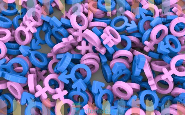 Эстрогены в продуктах питания - продукты богатые этим гормоном