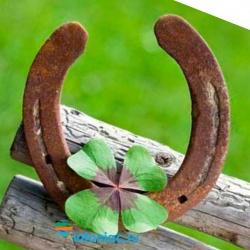 Удачу можно заманить, чтобы стать везунчиком, считает психолог