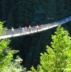 Самые зрелищные пешеходные мосты в мире
