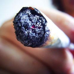 Новости о марихуане: любители травки стройнее, чем те, кто не употребляет