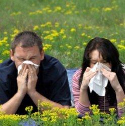 Как аллергия влияет на сексуальность