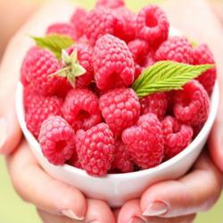 Кетоны малины: лучшее средство для похудения или рекламный трюк?