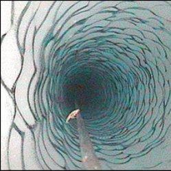 Антарктические креветки