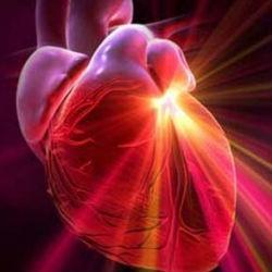 """Ожирение ведет к """"электрическому возмущению"""" сердца"""