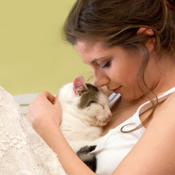 Кошки больше расположены к женщинам, чем к мужчинам