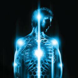 Как тело влияет на мозг: шесть главных аспектов влияния