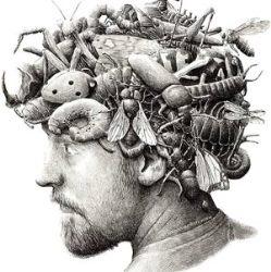Включайте мозг: самые интересные загадки с подвохом