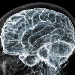 Мозг человека измеряет время, наблюдая за движениями
