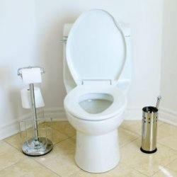 Полезные советы для вашего туалета