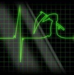 Что нам известно о человеческой смерти?