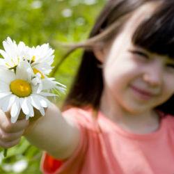 Шесть натуральных средств против аллергии