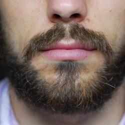 Женщины не любят бороды
