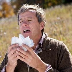 Чрезмерная чистота повышает риск развития аллергии