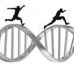 Генетическая предрасположенность к ожирению у подростков