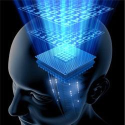 Сон помогает улучшить память
