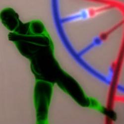 Генетически измененные спортсмены: правда или вымысел?